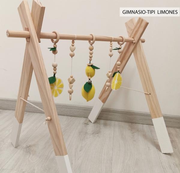 GIMNASIO LIMONES